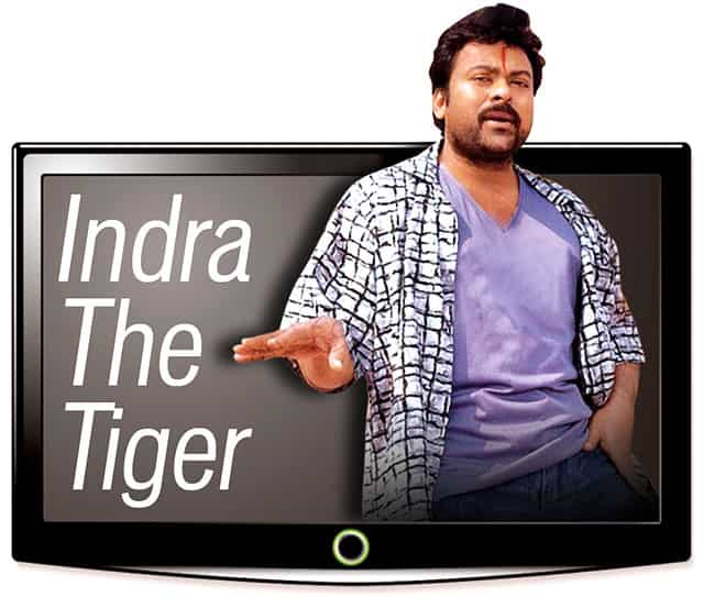 Why Indra The Tiger Is A Permanent Fixture On Indian Television Hindustan Times Jan 03, 2013, view : why indra the tiger is a permanent