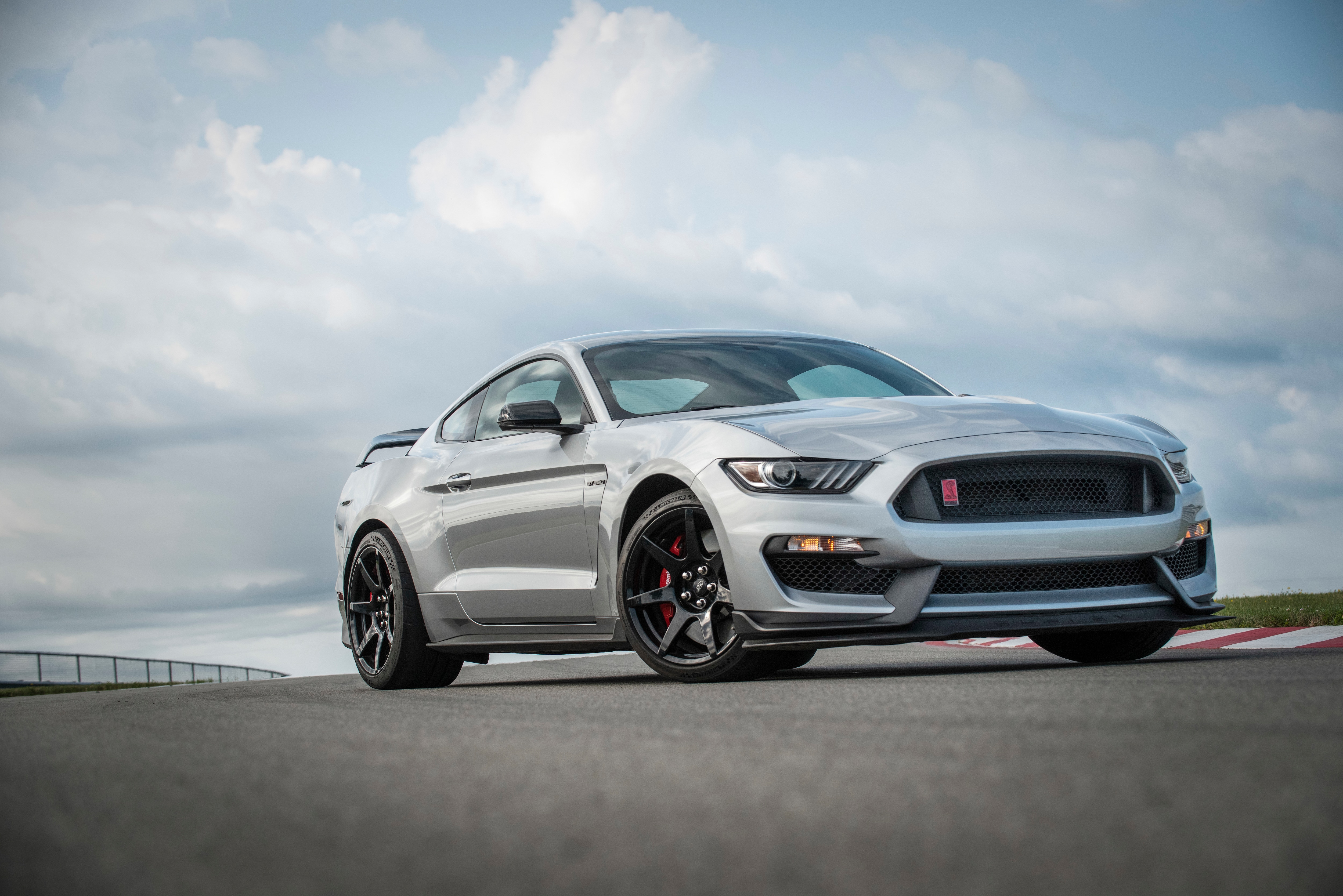Ford sold 102,090 units of Mustang globally in 2019. During this period, Mustang sales in Germany increased 33%, in Poland sales rose by nearly 50%, and in France, they nearly doubled. (2019 Ford Mustang)