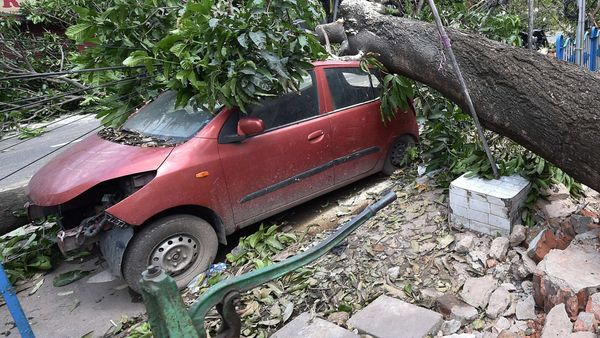 Kolkata: Mangled remains of a car after a tree fell on it, in the aftermath of Cyclone Amphan. (PTI)
