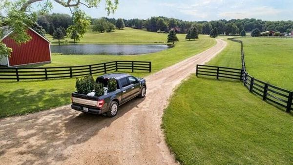 The new Ford F-150 Limited truck is seen in a picture released by Ford Motor Co in Detroit. (via REUTERS)