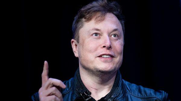 Tesla CEO Elon Musk (AFP)