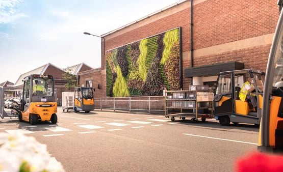 The 50-metre living green wall installed at Bentley's UK facility
