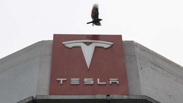 File photo - A bird flies over Tesla Inc. signage at a store in San Francisco, California, US. (Bloomberg)