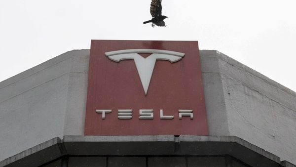 A bird flies over Tesla Inc. signage at a store in San Francisco, California, US. (Bloomberg)