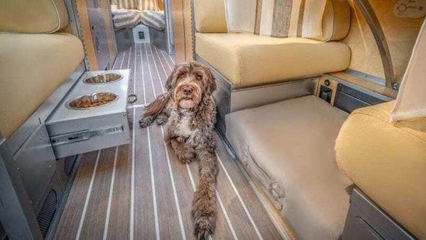 The limited edition Bowlus motor home is pet-flex friendly (Image: Bowlus)