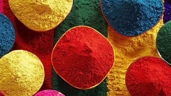 The chemical elements in colours used during Holi can be harmful to your car's paint or other materials, at the exterior and inside the cabin as well. (HT_PRINT)