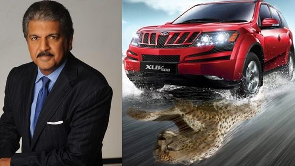 """Anand Mahinda shares the """"selfie with Cheetah"""" video, says XUV Safer"""
