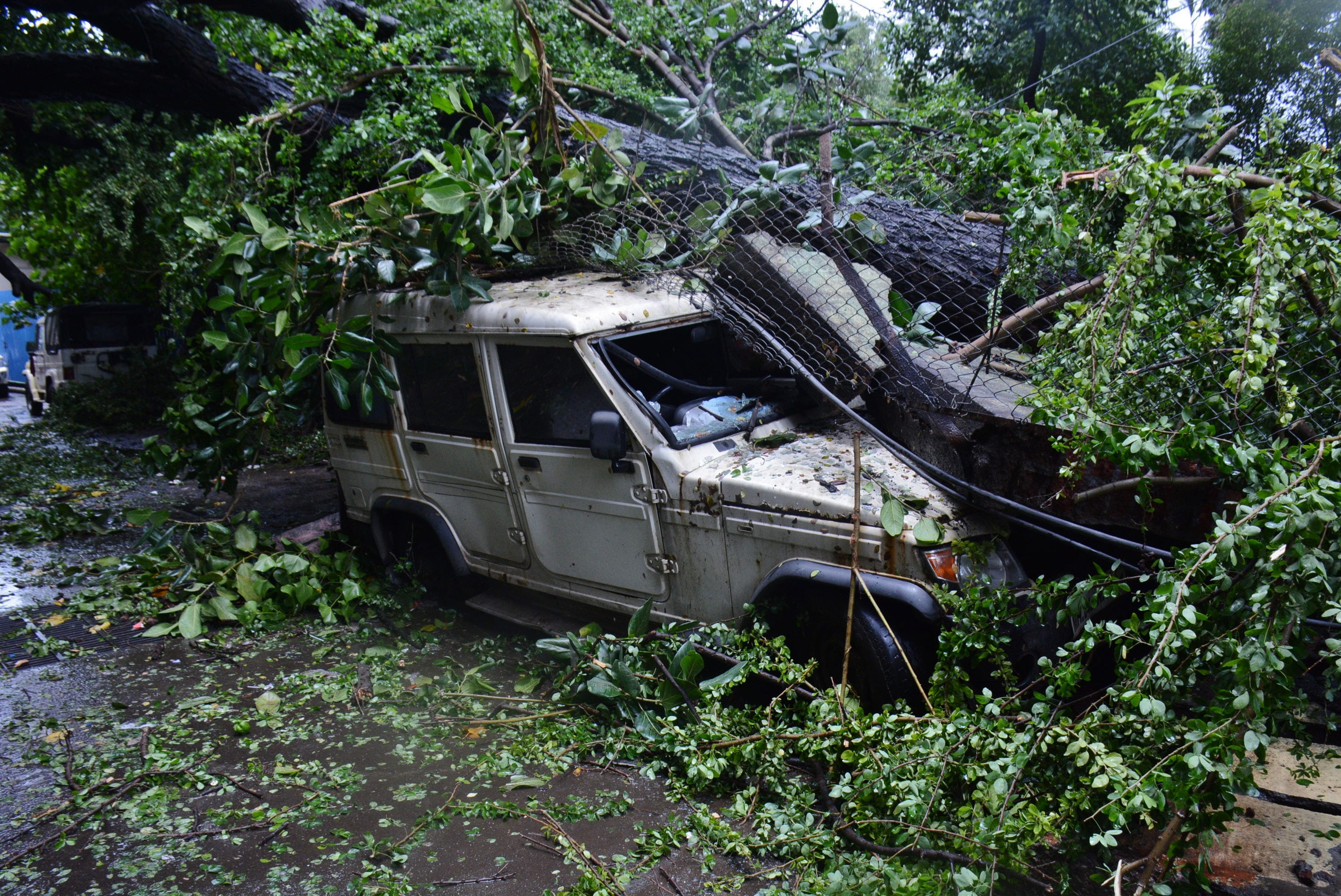 Several vehicles were smashed by fallen trees after heavy showers lashed Mumbai and adjoining areas. (HT Photo)