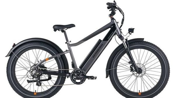 RadRover 6 Plus electric bicycle