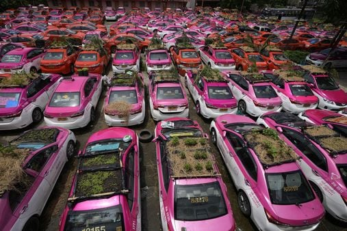 Idled taxis in Thailand being used for growing food (AP)