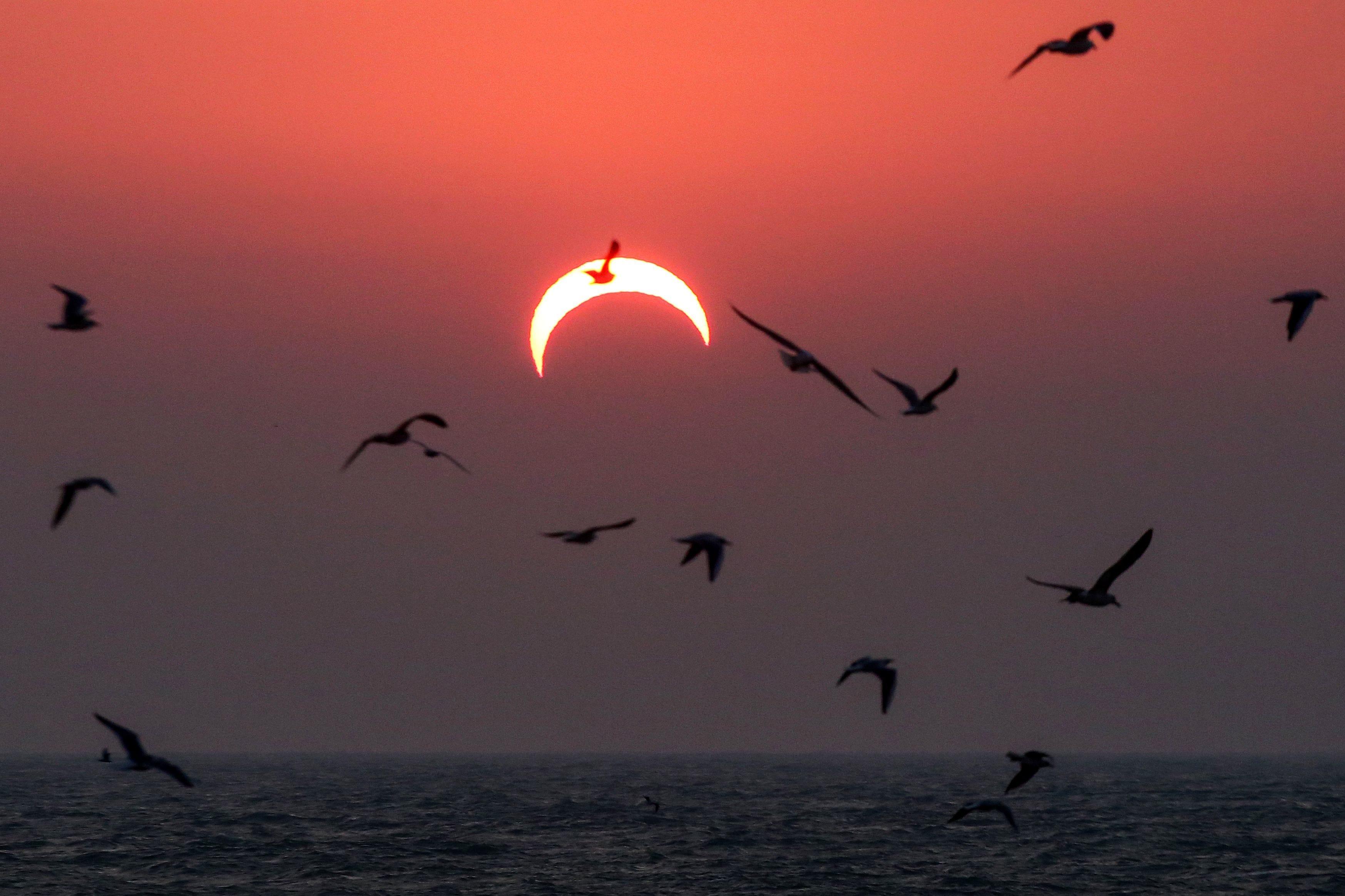 কুয়েতের ছবি (AFP)