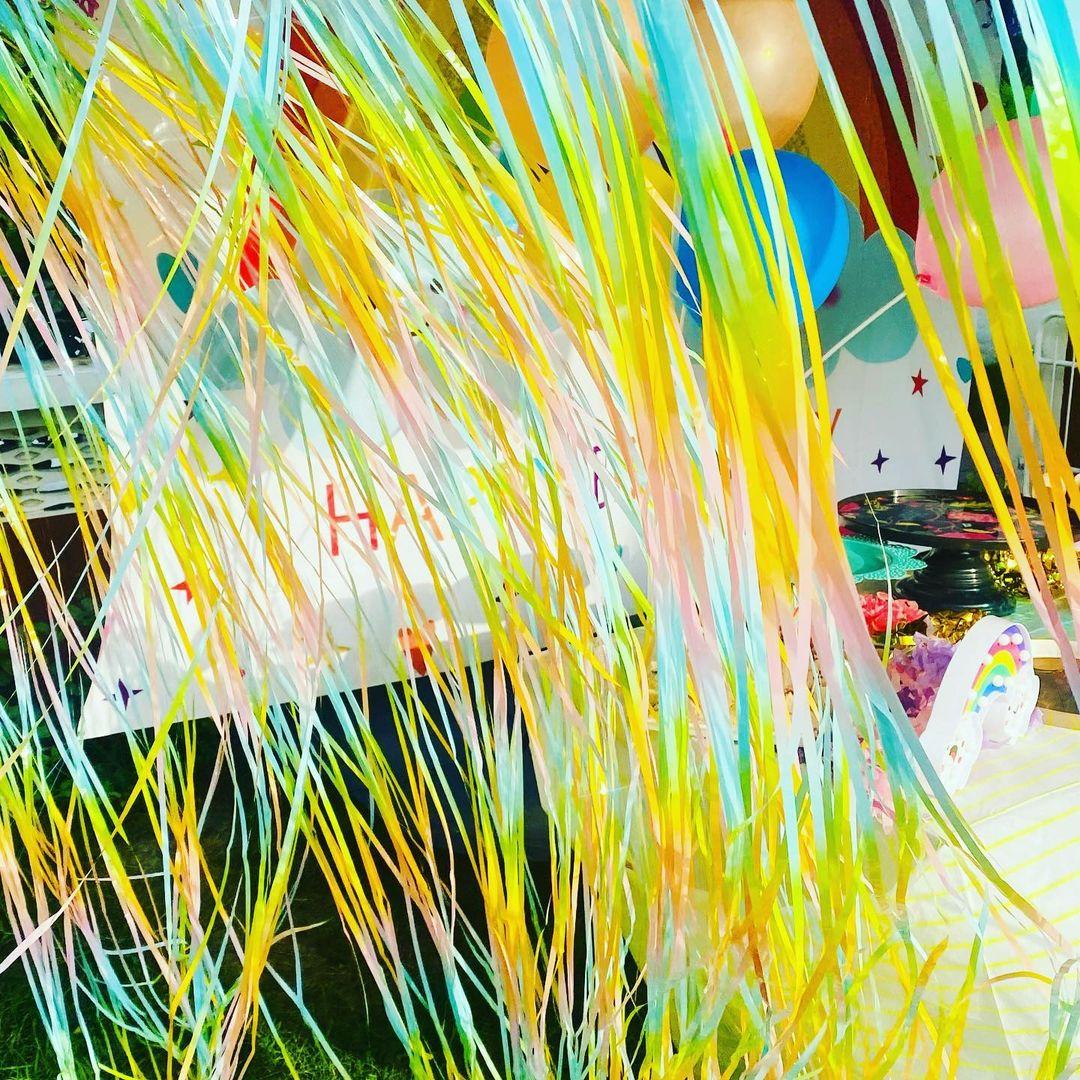 মীরা মাত্র ২০ বছর বয়সে শাহিদের সঙ্গে সাত পাকে বাঁধা পড়েন। এক বছরের মধ্যেই তাঁদের প্রথম কন্যাসন্তান হয় মিশা। ২০১৮ সালে তাঁদের পুত্র সন্তান জৈনের জন্ম হয়।