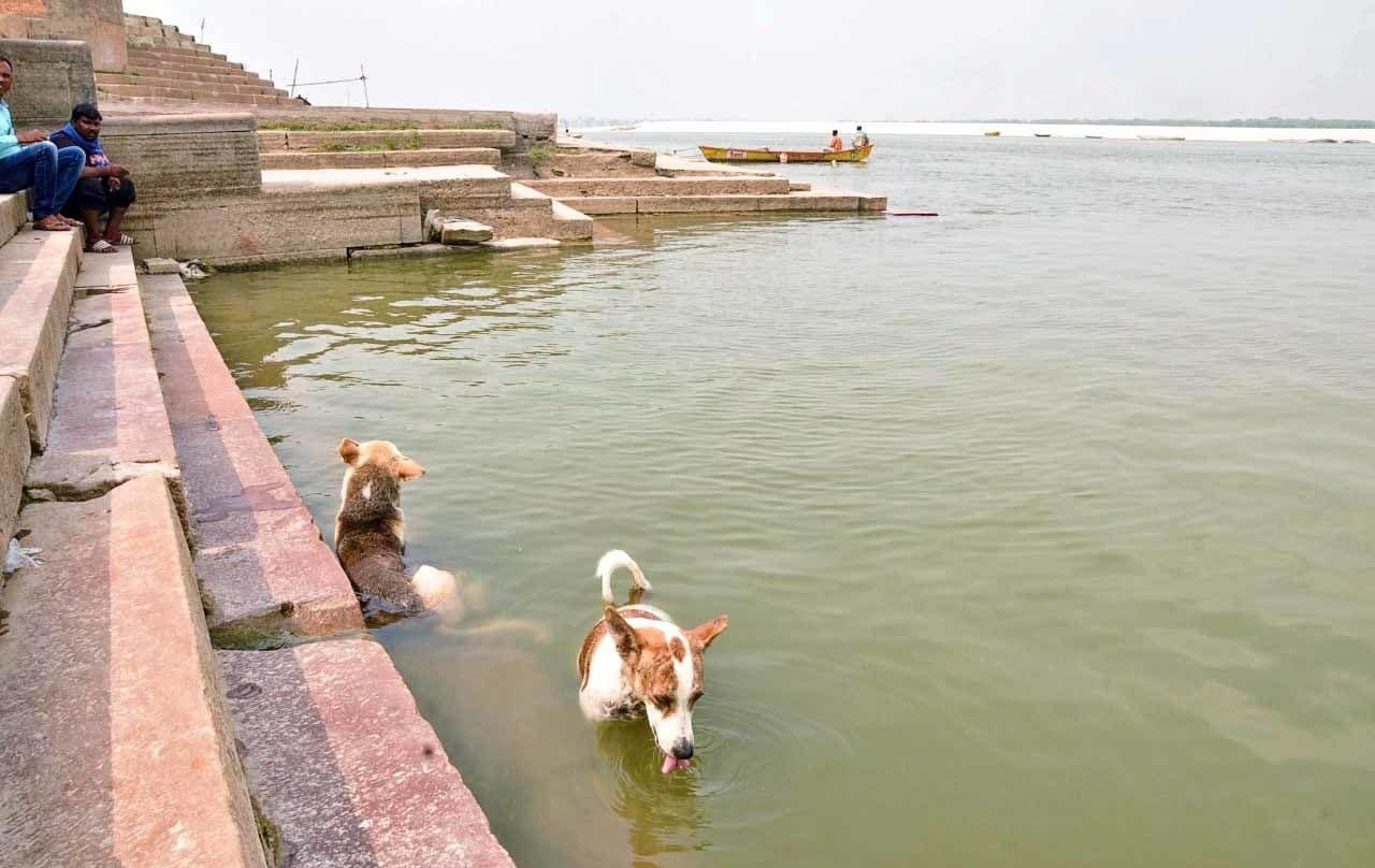 <p>Ganga Ghats deserted on the occasion of Ganga Dussehra</p>