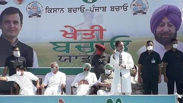 Farm Laws Protest LIVE: Harsimrat Badal slams Rahul Gandhi's 'tractor drama'