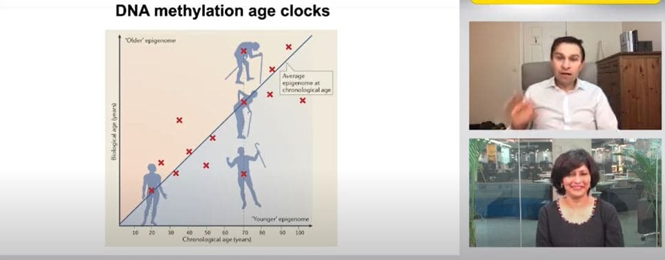<p>The difference between biological age and chronological age</p>