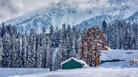 Northern India is currently enjoying winter season and the dip in temperature has resulted in snowfall in various regions.(Twitter/jindadilkashmir)