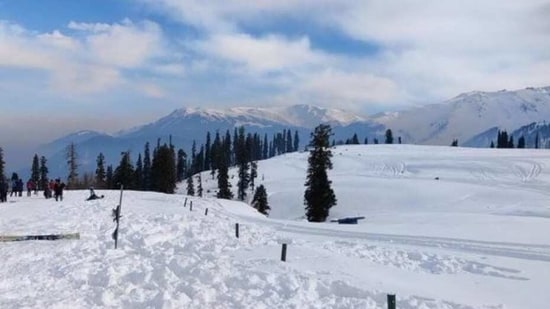 The Kashmir Valley is covered with snow and it is the most beautiful view we have seen in a long time.(Twitter/Jain23Sarika)