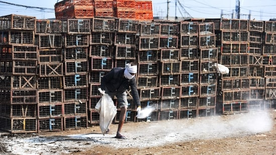 A municipal worker disinfects an area at Ghazipur poultry market in New Delhi on January 10. The deaths have triggered fears of a bird flu outbreak and prompted sample collection of dead birds to ascertain if deaths were caused by a virus. The Ghazipur market has also been closed for 10 days and a ban imposed on the import of live poultry in the city.(Raj K Raj / HT Photo)