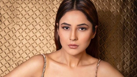 Shehnaaz Gill did her own make-up for her Instagram live.