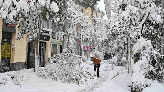 A person walks past fallen branches in Madrid amid heavy snowfall on January 9. The Spanish capital is trying to get back on its feet after a 50-year record snowfall that paralysed large parts of central Spain over the weekend. It has now led to icy weather that is hampering the rollout of the much-needed vaccination against the coronavirus.(Gabriel Bouys / AFP)
