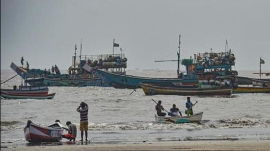 The compensation to fishermen who rescue and release endangered marine life is provided once they submit proof of the release and damage to nets. (PTI)