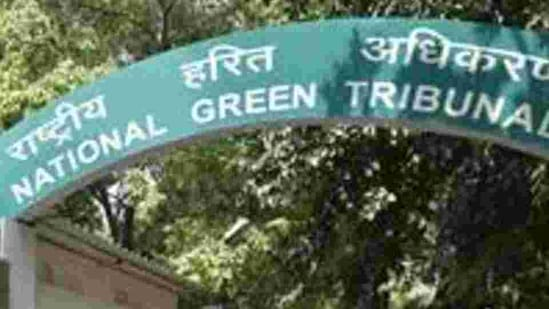 The NGT had earlier directed the Central Pollution Control Board (CPCB) to ensure that no plastic bag less than 50 microns of thickness be manufactured, stocked, sold and used in the country.(Arvind Yadav/Hindustan Times)