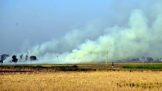 Straw and stubble burning by farmers are a major cause of air pollution in north India.(HT FILE PHOTO)