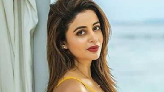 Neha Pendse works in Marathi, Hindi and South cinema.