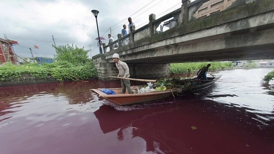 A polluted river in the eastern province of Zhejiang.(AP)