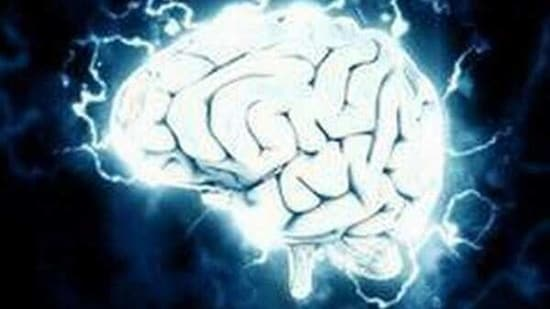 A KAIST team's mathematical modelling has revealed that efficient brain circuitry develops spontaneously by showing that the topographic tiling of cortical maps originates from bottom-up projections from the periphery.(ANI)