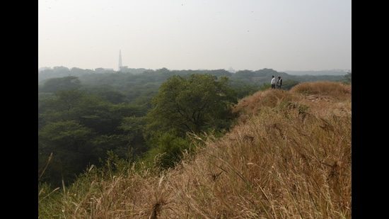 A view of the Sanjay Van forest reserve, in New Delhi, that is part of the south central area of the greater Delhi Ridge. (Sanchit Khanna/HT PHOTO)