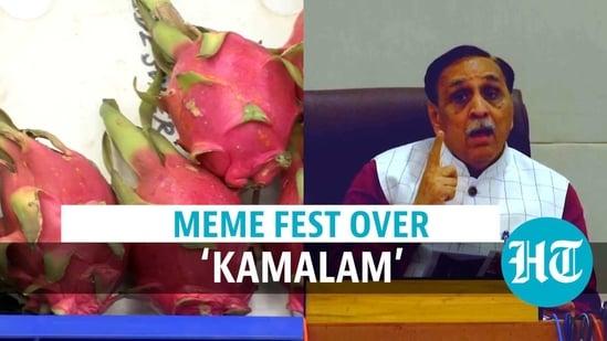 meme fest over Dragon Fruit renaming
