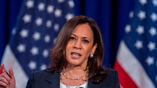 """Harris had struck a chord with Tamil people when she called out to her """"chithis"""" ('aunts' in Tamil) during a speech in August.(File Photo)"""