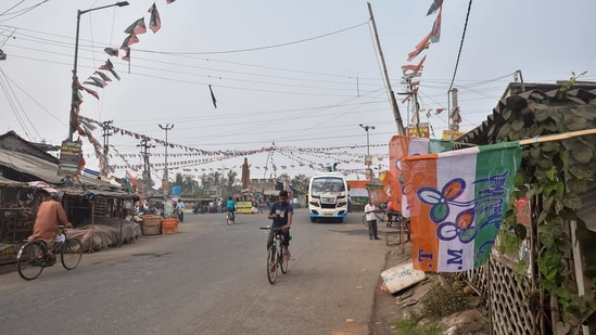 Tengua market area decorated with TMC flag at Nandigram in East Medinipur district(PTI Photo)