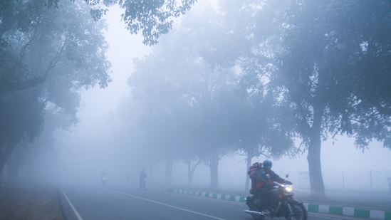 Fog seen engulfed during the early hours of the morning in New Delhi. (Sanchit Khanna/ HT Photo)