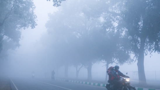 Dense to moderate fog is predicted in Delhi for the next four days, the IMD said.(Sanchit Khanna/ HT Photo)