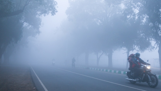 IMD scientists said the low maximum temperature could be attributed to the dense fog cover over Delhi in the early hours of Sunday.(Sanchit Khanna/ HT Photo)