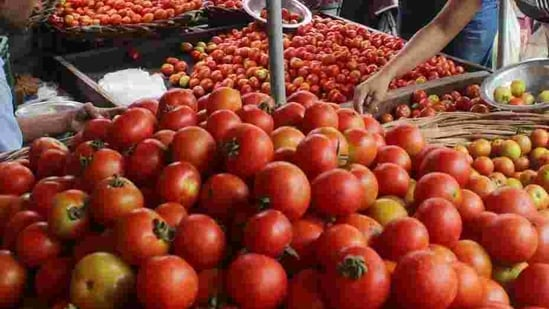 Sindh ranked first in the production of onion and tomatoes among all provinces of Pakistan.(Rahul Grover/HT File Photo )