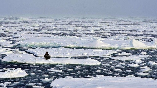 Activist Mya-Rose Craig, 18, sits on an ice floe in the middle of Arctic Ocean demanding action on climate crisis. (REUTERS File)