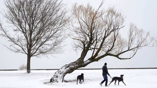 National Weather Service meteorologist Taylor Nicolaisen, who is based near Omaha, said up to 15 inches (38 centimeters) was reported in spots between York, Nebraska, and Des Moines, Iowa.(AP)