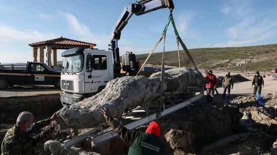 Workers lift a fossilised tree, part of a petrified forest, with a crane on the island of Lesbos, Greece.(REUTERS)