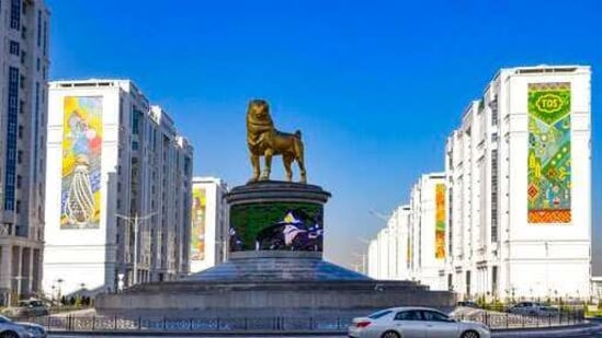 The statue of the Alabai, the Central Asian shepherd dog is seen in Ashgabat, Turkmenistan.(AP)