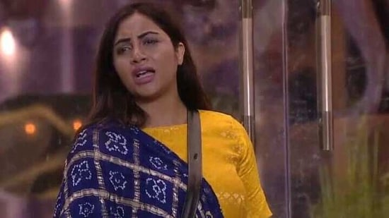 Arshi Khan claimed she never exposed Vikas Gupta's personal matter on the show, but he did it himself.(Colors)