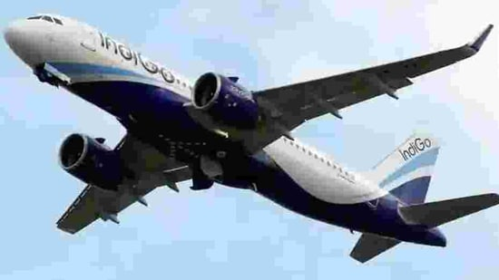 The airline's total income declined 50% year-on-year to <span class='webrupee'>₹</span>5,142 crore in the third quarter, IndiGo said in a statement.(HT Archive)