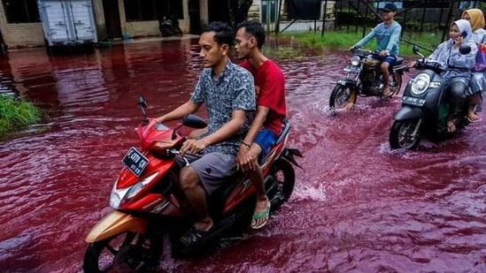 People ride motorbikes through a flooded road with red water due to the dye-waste from cloth factories, in Pekalongan, Central Java province, Indonesia.(REUTERS)