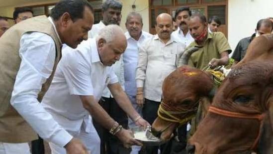 Although the government has allowed the slaughter of the buffaloes aged above 13, the demand is dismal, say traders. (Photo @CMofKarnataka)