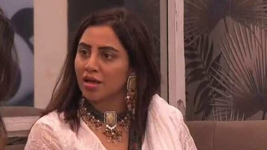Arshi Khan was voted out of Bigg Boss 14.(Colors)