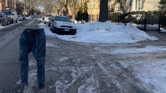The image shows a frozen pant kept in the middle of a road.(Twitter/@adamselzer)
