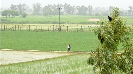 BSF sources say the movement of suspects was noticed across the barbed wire fence and before the zero line at the border, too. The suspects managed to escape due to the fog cover. (HT file photo)