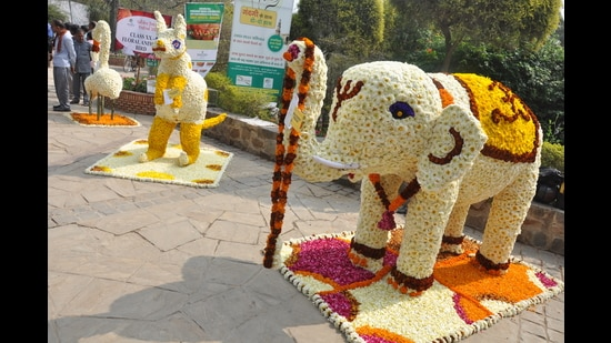The 34th Garden Tourism Festival will have a bazaar and also some workshops for gardening enthusiasts in Delhi-NCR.